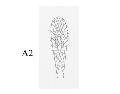 J:son&Co 58305 Заготовки для имитаций крылышек Realistic Wing Material for Stoneflies (фото, вид 1)