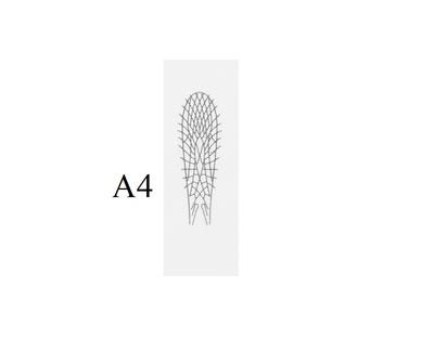 J:son&Co 58305 Заготовки для имитаций крылышек Realistic Wing Material for Stoneflies (фото, вид 3)