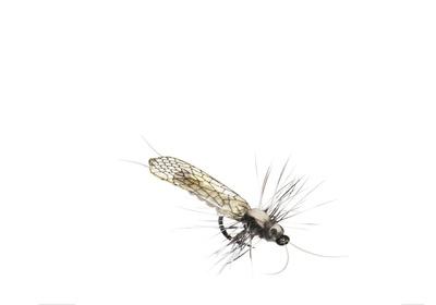 J:son&Co 58305 Заготовки для имитаций крылышек Realistic Wing Material for Stoneflies (фото, вид 6)