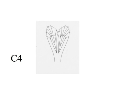 J:son&Co 58307 Заготовки для имитаций крылышек Realistic Wing Material For Caddis Adult (фото, вид 4)