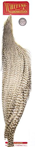 WHITING™ 53196 Половинки петушиных скальпов 1/2 Rooster Dry Fly Cape BRONZE (фото, вид 1)