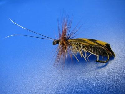 Veniard 58338 Заготовки для крылышек ручейника Natural Feather Caddis Wings (фото, вид 2)