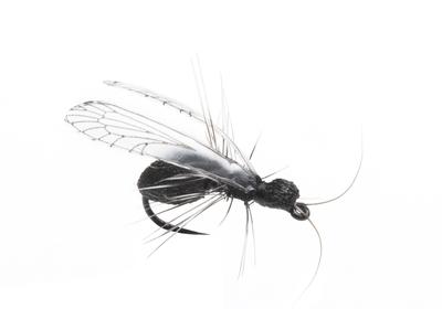 J:son&Co 58310 Заготовки для имитаций крылышек Realistic Wing Material For Caddis Pupa / Wasp / Ant / Hopper (фото, вид 3)