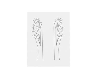 J:son&Co 58310 Заготовки для имитаций крылышек Realistic Wing Material For Caddis Pupa / Wasp / Ant / Hopper (фото, вид 7)