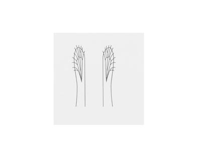 J:son&Co 58310 Заготовки для имитаций крылышек Realistic Wing Material For Caddis Pupa / Wasp / Ant / Hopper (фото, вид 8)