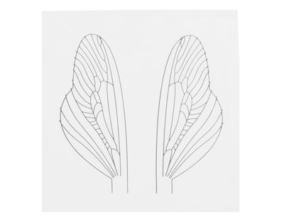 J:son&Co 58311 Заготовки для имитаций крылышек Realistic Wing Material For Caddis Spent / Stonefly Spent (фото, вид 2)