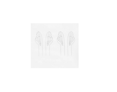 J:son&Co 58311 Заготовки для имитаций крылышек Realistic Wing Material For Caddis Spent / Stonefly Spent (фото, вид 5)