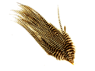 Ewing-Feaser Birds 53218 Набор перьев Wooly Bugger Paks (фото, вид 1)