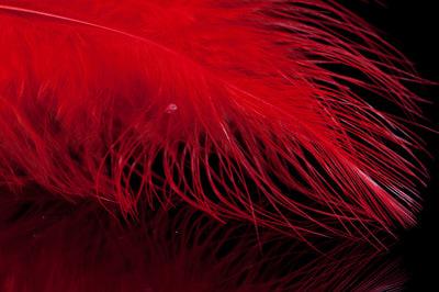 A.Jensen 53221 Перо марабу Marabou Feather (фото, вид 2)
