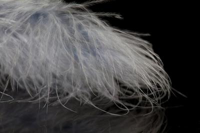 A.Jensen 53221 Перо марабу Marabou Feather (фото, вид 5)