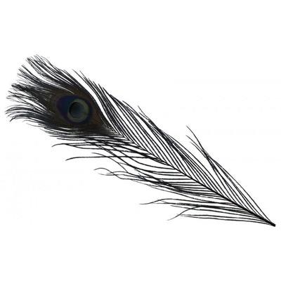 Spirit River 53121 Перо павлина Iridescent Dyed Peacock (фото, вид 1)