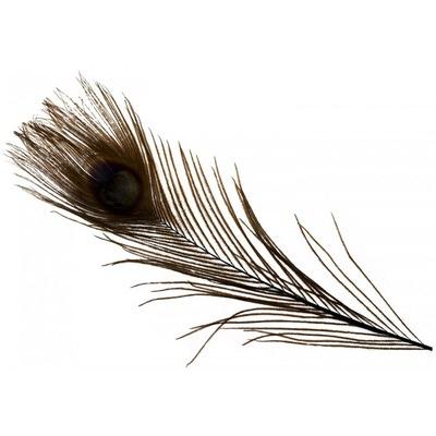Spirit River 53121 Перо павлина Iridescent Dyed Peacock (фото, вид 2)
