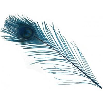 Spirit River 53121 Перо павлина Iridescent Dyed Peacock (фото, вид 7)