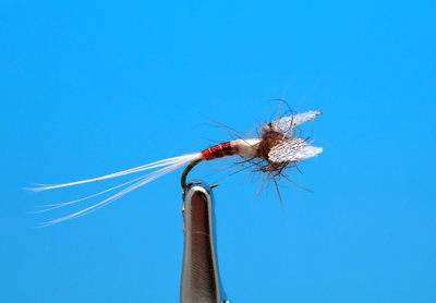 Artflies 11201 Сухая мушка Burnt Wing Spinner Blue Quill (фото, вид 1)
