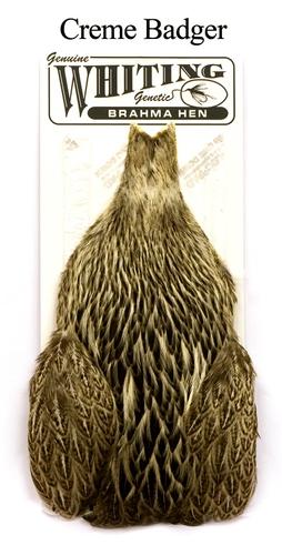 WHITING™ 53275 Скальп курицы Brahma Hen Capes (фото, вид 1)