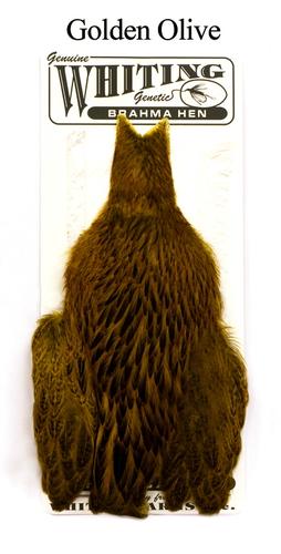 WHITING™ 53275 Скальп курицы Brahma Hen Capes (фото, вид 4)