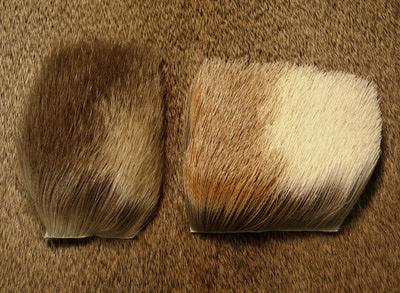 Nature's Spirit 52403 Мех антилопы Antelope Hair (фото, вид 1)