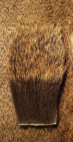 Nature's Spirit 52407 Мех лося Cow Elk Backstrip (фото, вид 1)