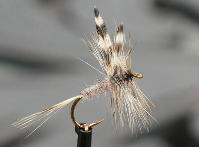 Crystal River 11223 Сухая мушка Adams (фото, вид 1)