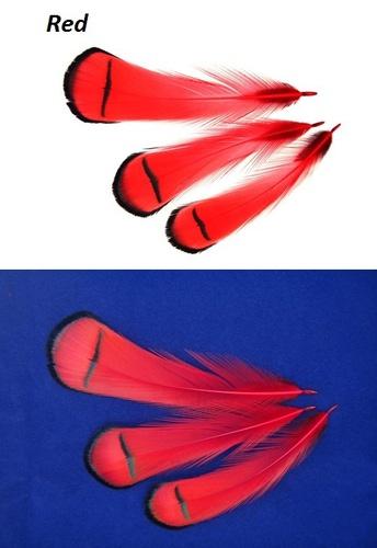 SFT-studio 53013 Фазана алмазного шейные перья LADY AMHERST PHEASANT TIPPETS (фото, вид 6)