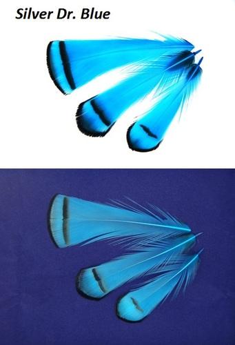 SFT-studio 53013 Фазана алмазного шейные перья LADY AMHERST PHEASANT TIPPETS (фото, вид 7)
