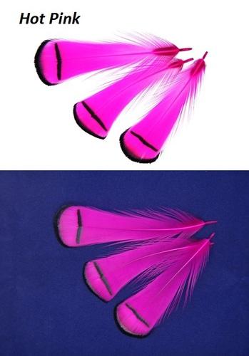 SFT-studio 53013 Фазана алмазного шейные перья LADY AMHERST PHEASANT TIPPETS (фото, вид 8)