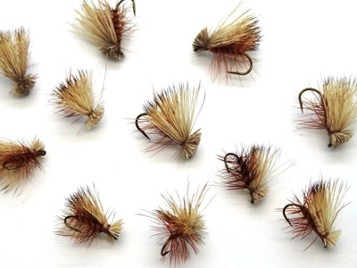 Pacific Fly Group 11121 Сухая мушка Elk Hair Caddis Brown (фото, вид 1)