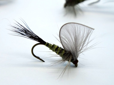 Pacific Fly Group 11092 Сухая мушка Hackle Wing Mayfly Green Drake (фото, вид 2)