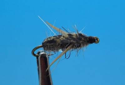 Pacific Fly Group 14113 Мушка нимфа Brent's Boatman (фото, вид 1)