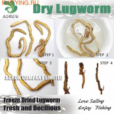 Agrok 66034 Натуральная насадка / наживка Freez Dried Lugworm Bait (фото, вид 2)