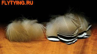 Hareline 53103 Утки древесной перья BARRED WOODDUCK FEATHER