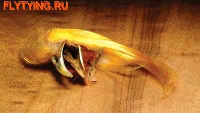 Hareline 53111 Фазана золотого загривок Golden Pheasant Crest