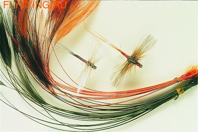 Veniard 53170 Очищенные ости перьев Ready Stripped Hackle Quills
