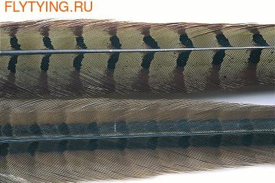 Veniard 53172 Перо фазана Cock Pheasant Centre Tail (фото)