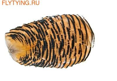 Veniard 53179 Шейный сегмент Golden Pheasant Tippet Collar