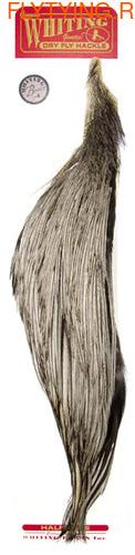 WHITING™ 53196 Половинки петушиных скальпов 1/2 Rooster Dry Fly Cape BRONZE (фото)