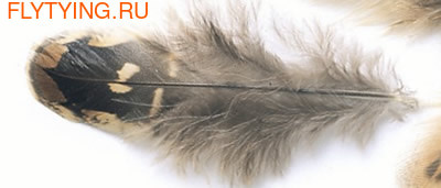 Veniard 53203 Перья самки фазана Pheasant Hen Ringneck Shoulder Feathers Natural