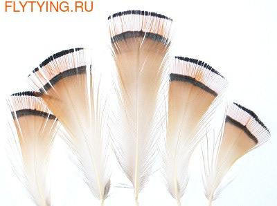 Veniard 53207 Шейные перья золотого фазана Golden Pheasant Tippet Feathers