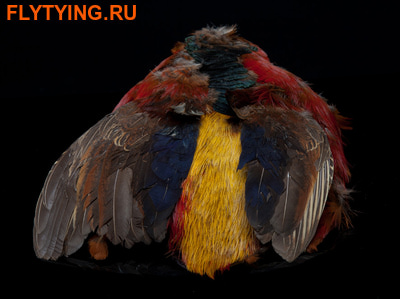A.Jensen 53224 Перо золотого фазана Golden Pheasant Body Skin (фото)