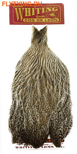 WHITING™ 53260 Перья курицы Coq De Leon Hen Cape (фото)