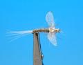 Artflies 11199 Сухая мушка Burnt Wing Spinner Gray