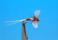 Artflies 11201 Сухая мушка Burnt Wing Spinner Blue Quill