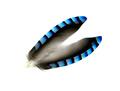 River-Fly 53301 Перья сойки Jay Wings Hackles