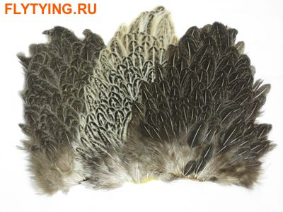 53145 Куриное седло Soft Hackle Hen Saddle Patches