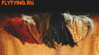 53155 Перья из седла петуха Wolly Bugger Saddle Hackle
