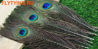 53279 Перо павлина Peacock Eyes 25-30cm