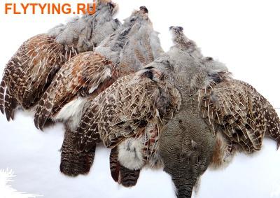 http://www.flytying.ru/upload/5224.jpg