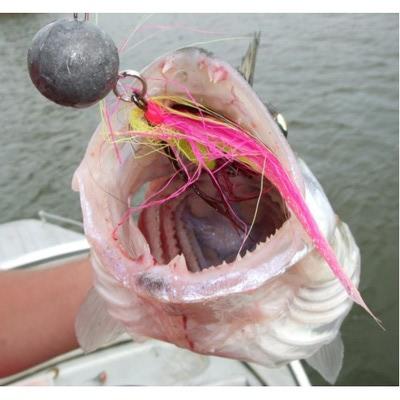 4Trouts 59512 Набор материалов для вязания мушек на щуку Pike Flies Set (фото, вид 3)
