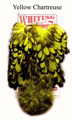 WHITING™ 53214 Перья курицы American Hen Soft Hackle with Chicabou(SH/C) (фото, вид 2)