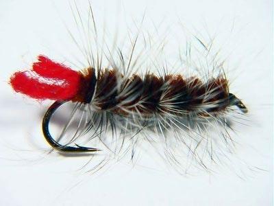 Crystal River 14432 Мушка нимфа Wooly Worm Brown (фото, вид 1)